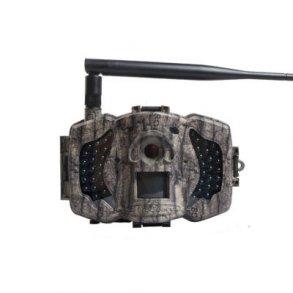 Hunting & Trail Cameras